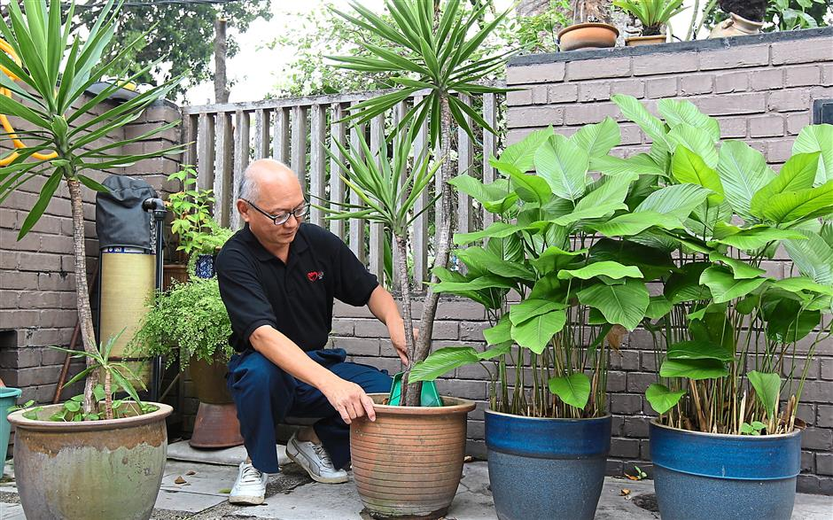 Jennifer, Richard's late wife, was a keen gardener. He now waters and takes care of the plants. Photo: The Star/Ibrahim Mohtar